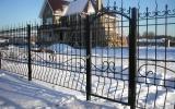 фото: забор кованый 21